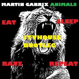 FatBoy Garrix - Animals Eat Sleep Rave Repeat (Jyvhouse Bootleg)